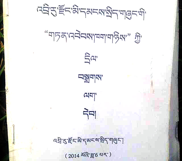 Title page of the temporary regulation passed by Diru County government. Courtesy TCHRD