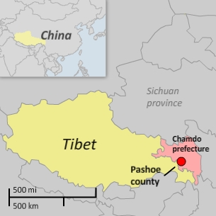 Gendun was taken into custody on July 1, 2013, after shouting slogans calling for Tibetan independence in Pashoe (Basu) county.