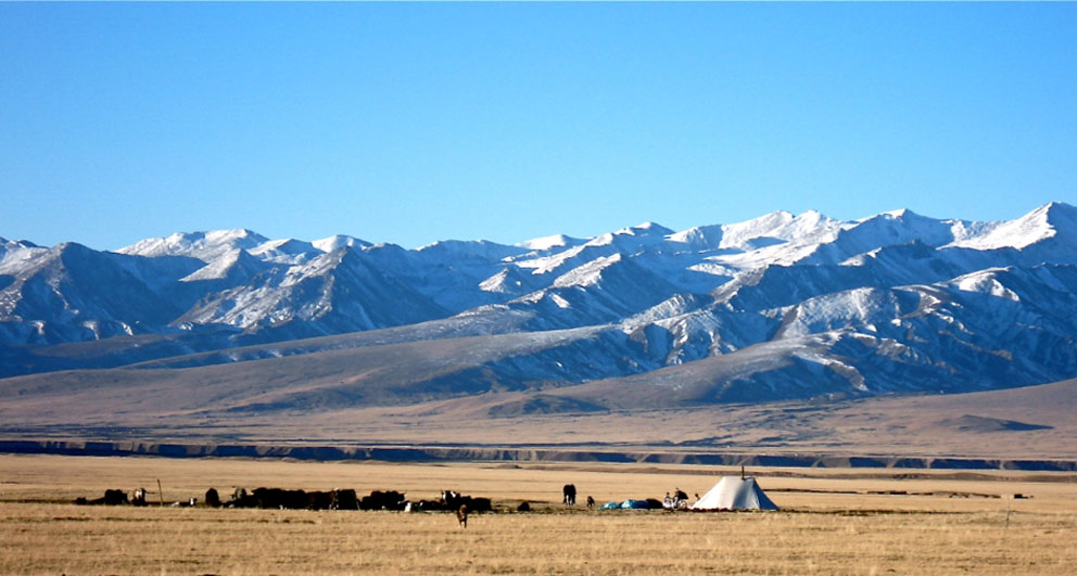 China says more than 55,000 Qinghai Tibetans had 'abandoned' nomadic life since 2005