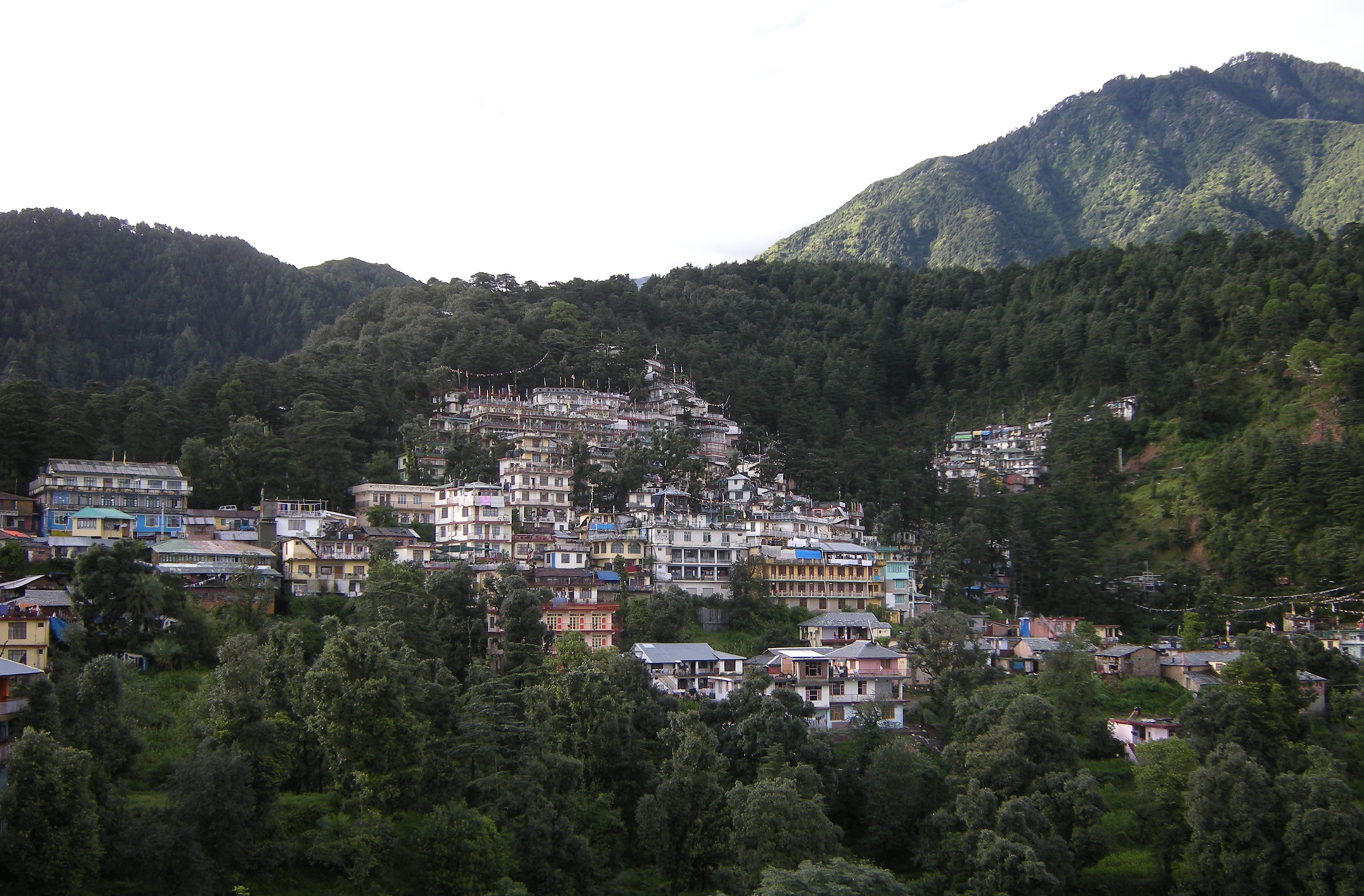 Tibetans in Himachal state allowed temporary occupation of homes built on forestland