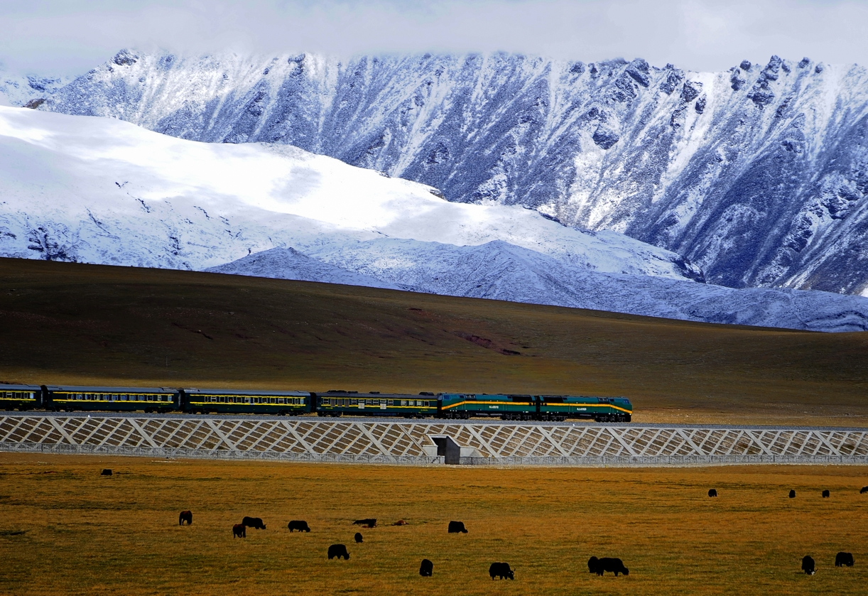 Moderate earthquake rattles but doesn't affect Qinghai-Tibet Railway