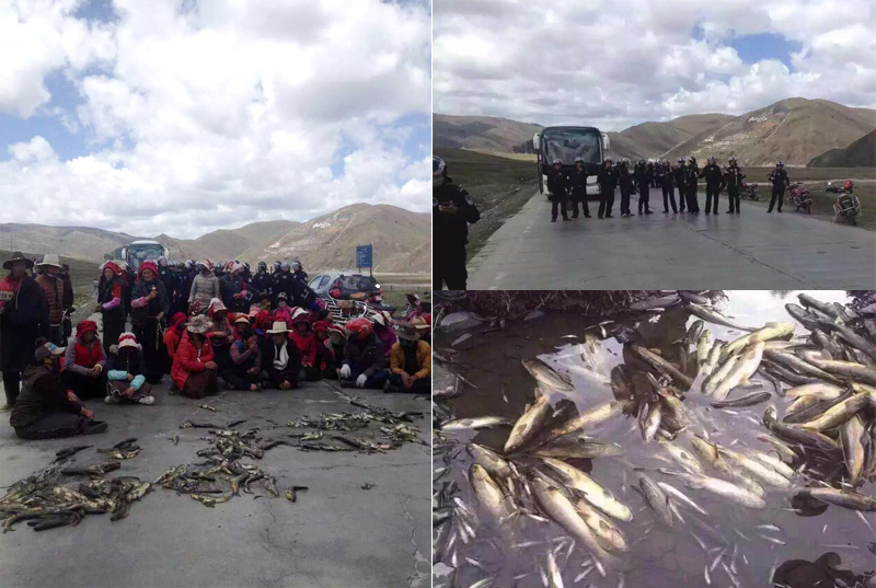 More than a hundred Tibetans staged a sit-in protest on May 4 over a Chinese company's resumption of lithium mining work at a site in Dartsedo. (Photo courtesy: TPI)