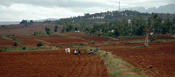 Dhondenling Tibetan Settlement, Kollegal, Karnataka State