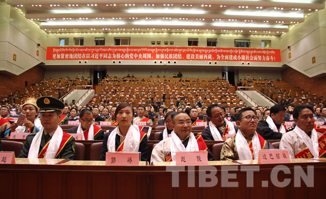 The 25 November Lhasa conference on 'village-based cadres team' program [Photo courtesy: Tibet.cn)