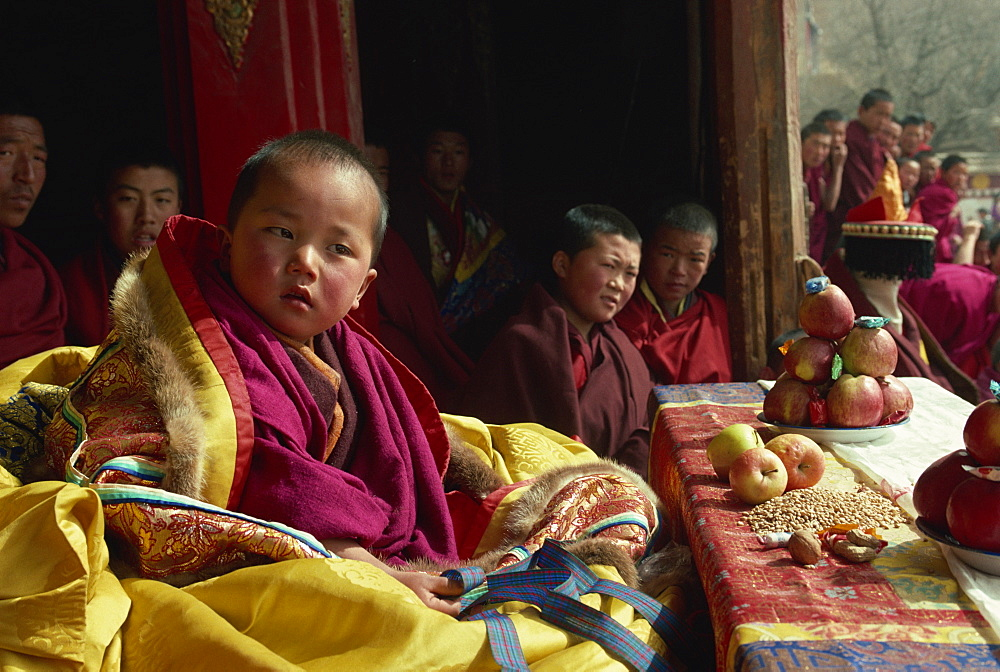 A living Buddha at the Tibetan Uppasilutan Monastery, northeast Qinghai, Tibet. (Photo courtesy: Robertharding)
