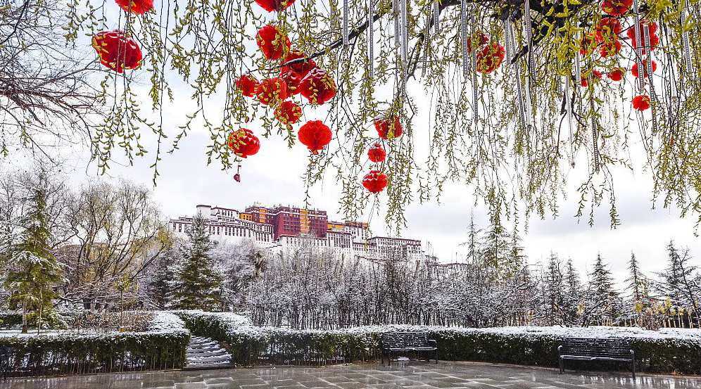 The Potala palace, the historical winter palace of the Dalai Lamas. (Photo courtesy: China Daily)