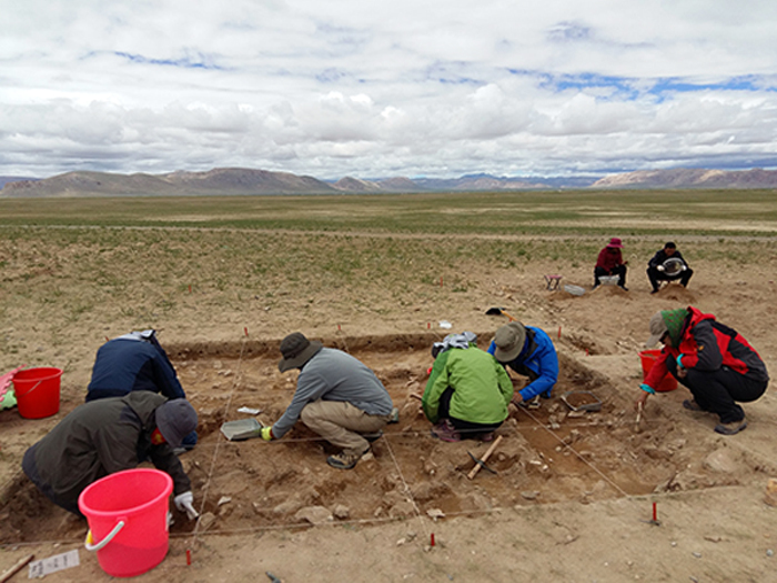Excavations at the site of Nwya Devu in central Tibet. (Photo courtesy: Chinese Academy of Sciences/ ZHANG Xiaolin)