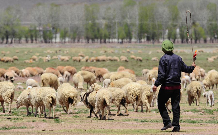 Lhasa claimed to be free of poverty