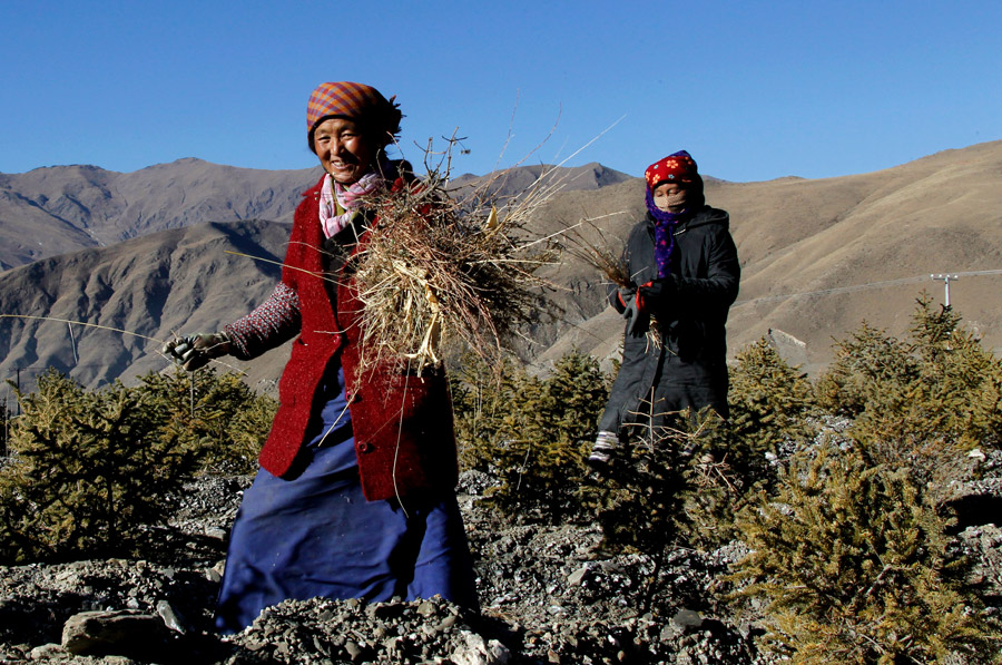 China faults officials' poverty relief work in Tibet